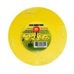 Kulaté desky lepové žluté...