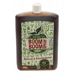Biotabs Boom Boom Spray, 100ml