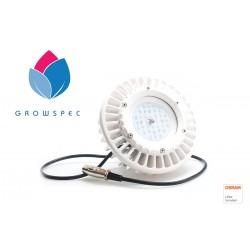 LED osvětlení GS Sunray 60W...